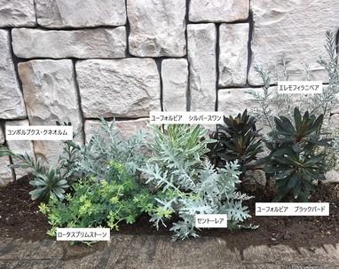 植栽を植えました。