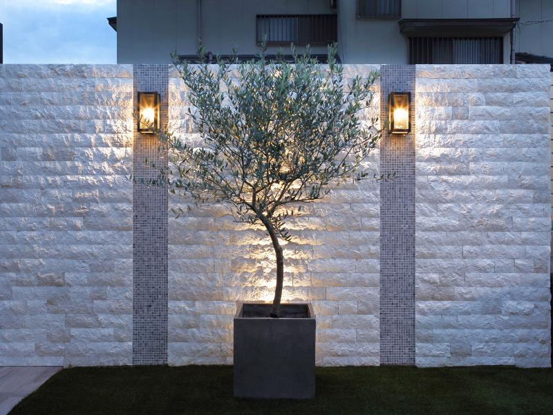 庭のシンボルツリーは樹形が象徴的なオリーブ。あえてのプランター使いです。