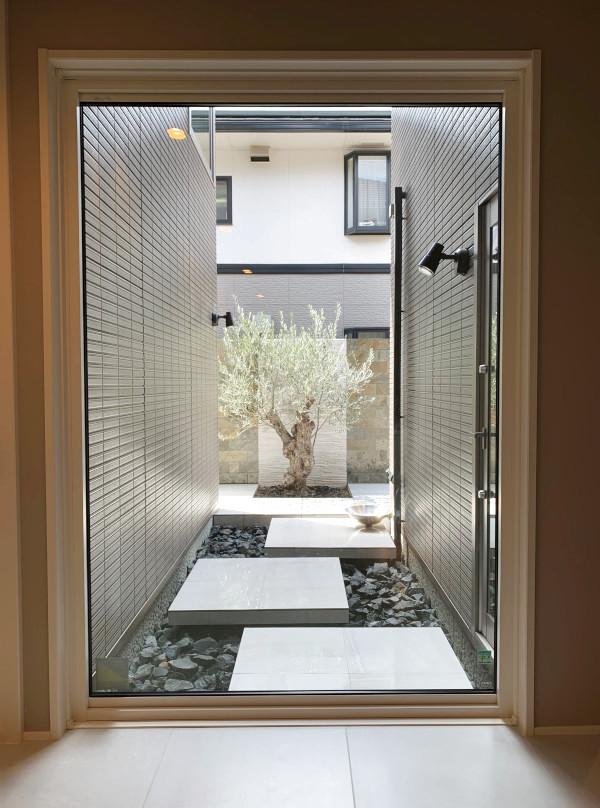 玄関を開けるとガラス越しにオリーブの古木が・・そしてそこへ繋がる空中通路。