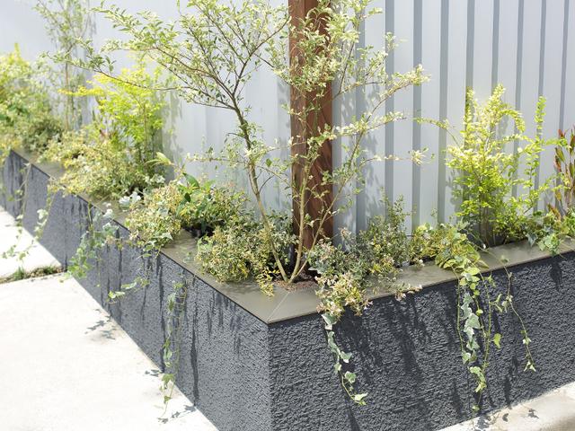 格子の足元に設けた植栽スペース。これにより雰囲気が一気に変わります。
